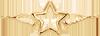 gwiazdka ze skrzydłami 2 cm pozłacana